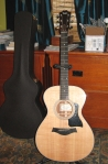 Taylor312e-stand