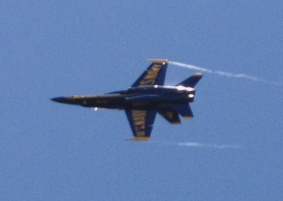 1 Angel-Blue